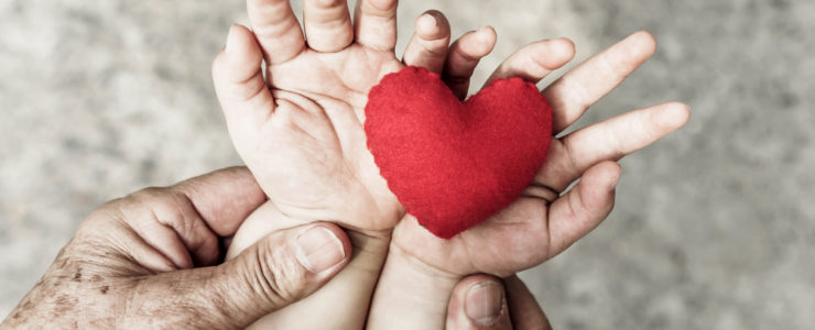 Blotchy and lined hands of an elderly person holding the wrists of a baby so the palms are upwards and red felt heart shaped cushion in it's hands